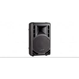 PM10 Pasive Speaker